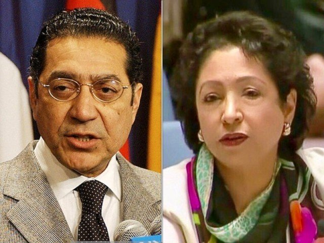 WAF appeals that Pakistan's Ambassador to the UN must be removed