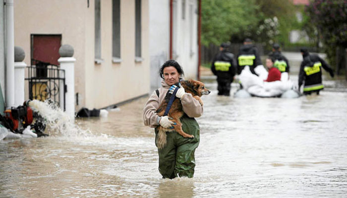 Three women Died while saving dog's lives in Slovakia Floods