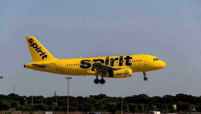 Passenger accused Spirit airline of failing her when she reported the alleged incident of harassment