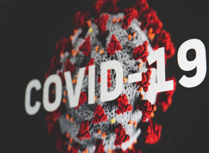 Coronavirus Survivors Are Still Vulnerable To Infection, WHO Says